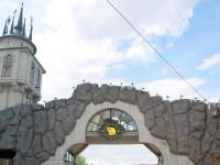 Московский зоопарк будет представлен в Международном совете музеев