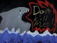 «Запрет на поедание акул»