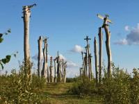 В Калужской области завершился фестиваль «Архстояние»