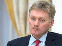 Песков прокомментировал действия активистов на выставке Стерджеса
