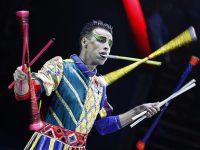 Фестиваль циркового искусства «Идол». Итоги подведены!