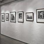 В Москве открывается выставка фотографий Дугласа Киркланда