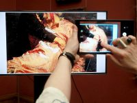 Стало известно, когда начнется реставрация пострадавшей картины Репина
