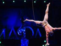 Известны результаты фестиваля циркового искусства «Идол»