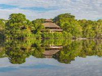 В джунглях Амазонки нашли затерянный город древней цивилизации