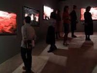 «Невидимый свет»: в Москве открылась выставка инфракрасного фото
