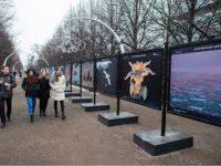 Фотовыставка «Притяжение Арктики» на Цветном бульваре