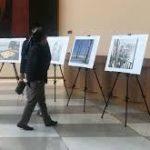 Фотоконкурс имени Стенина открыл интренет-голосование