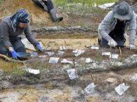 Археологи исследовали один из Катандинских курганов на Алтае