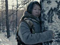 На 31-м «Кинотавре» победило якутское и чукотское кино