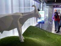 В «Гараже» открылась выставка о реалиях эпохи коронавируса