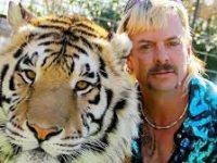 Netflix пообещал, что второй сезон «Короля тигров» будет еще безумнее